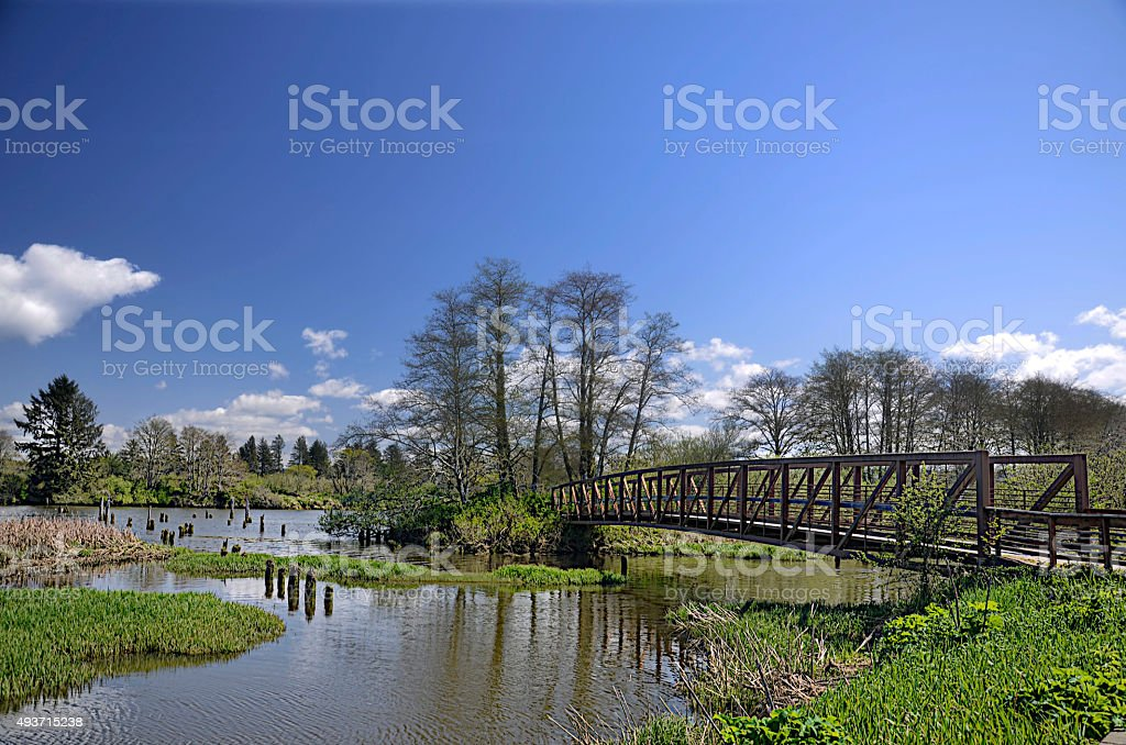 foot bridge stock photo