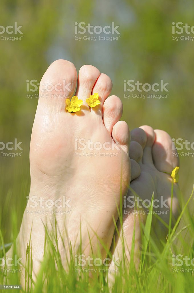 Foot in green grass with flowers royalty-free stock photo