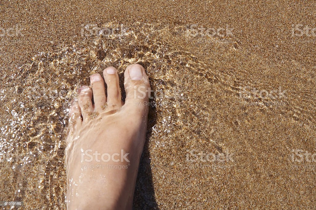 foot in the sea royalty-free stock photo