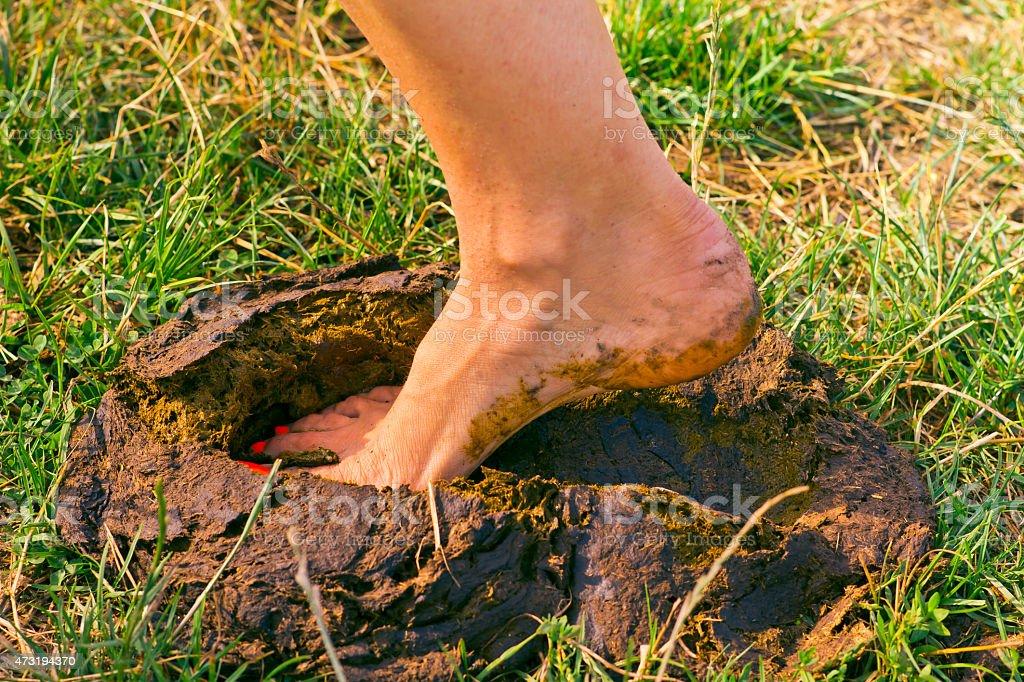 foot manure stock photo
