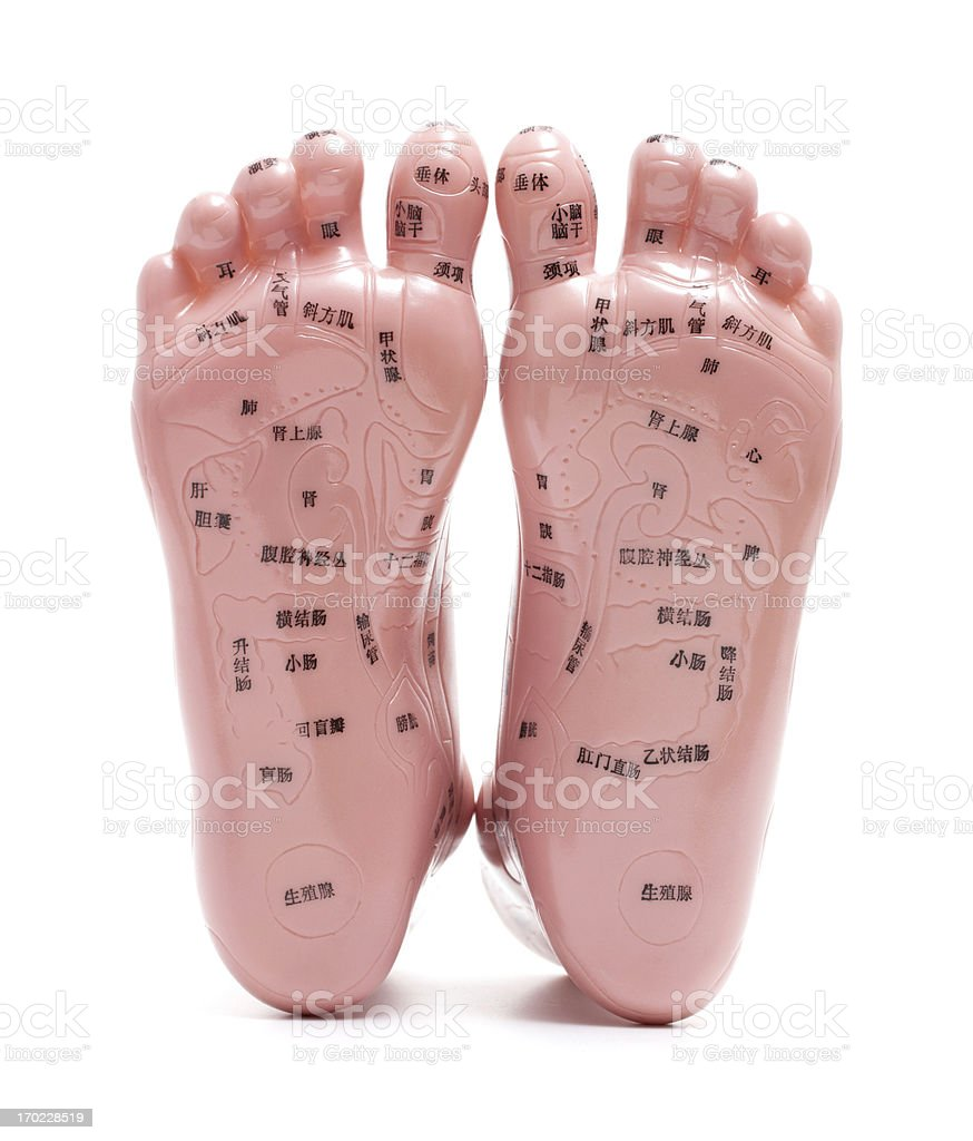 Foot massage model isolated on white background royalty-free stock photo