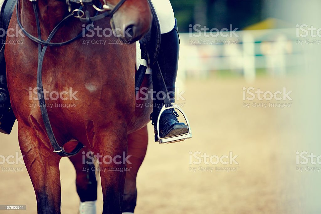 Foot of the athlete in a stirrup stock photo