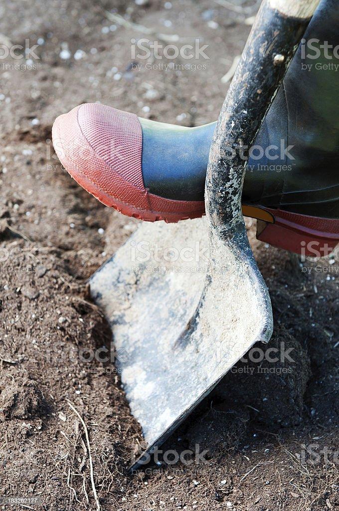 Foot on shovel royalty-free stock photo
