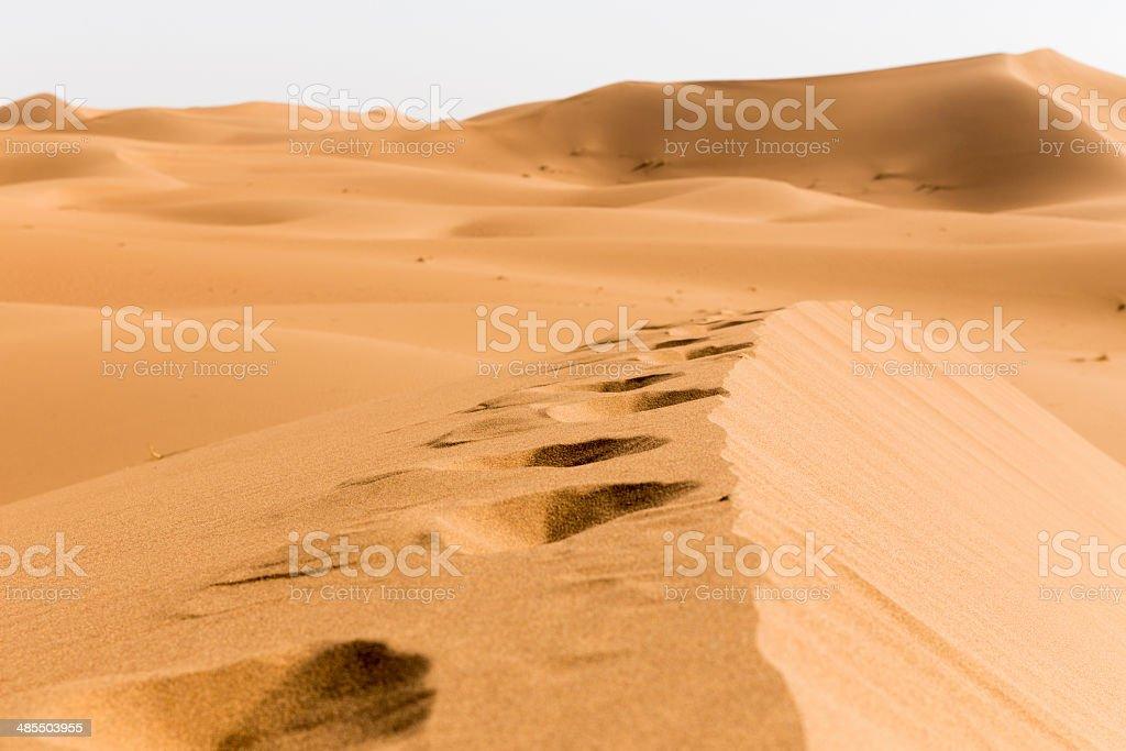 Foot print in desert sand royalty-free stock photo