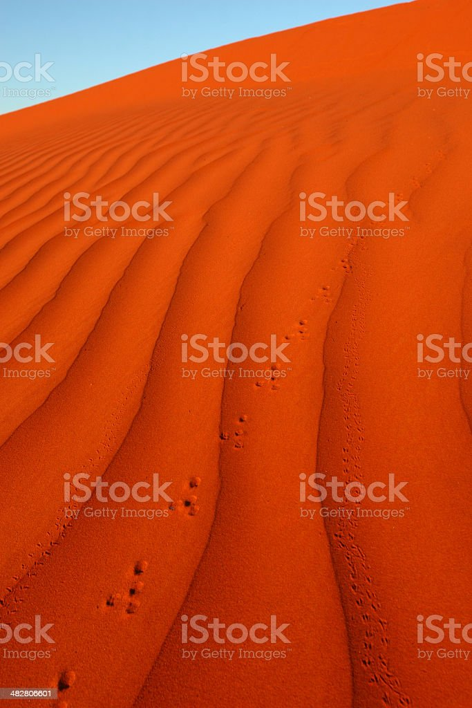 Foot prints in Desert Sands royalty-free stock photo
