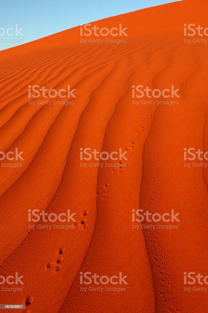 Foot prints in Desert Sands stock photo
