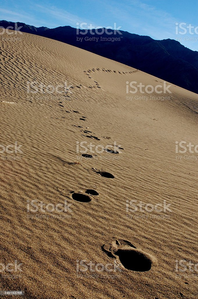Foot prints in the sand stock photo