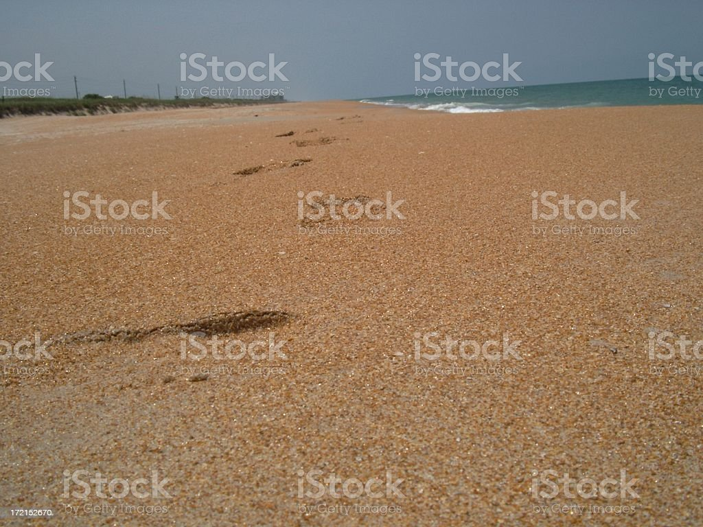 foot prints on the beach III royalty-free stock photo