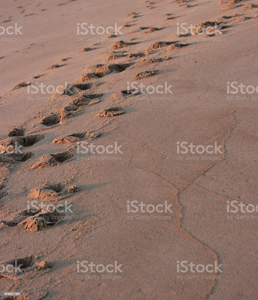 foot prints royalty-free stock photo