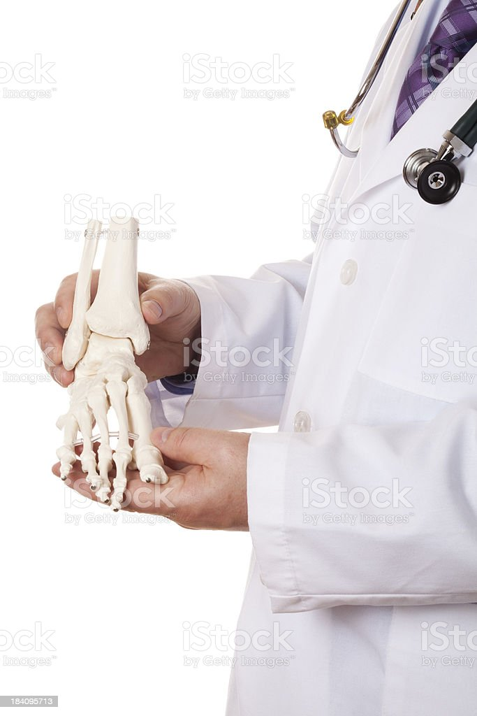 Foot skeleton stock photo