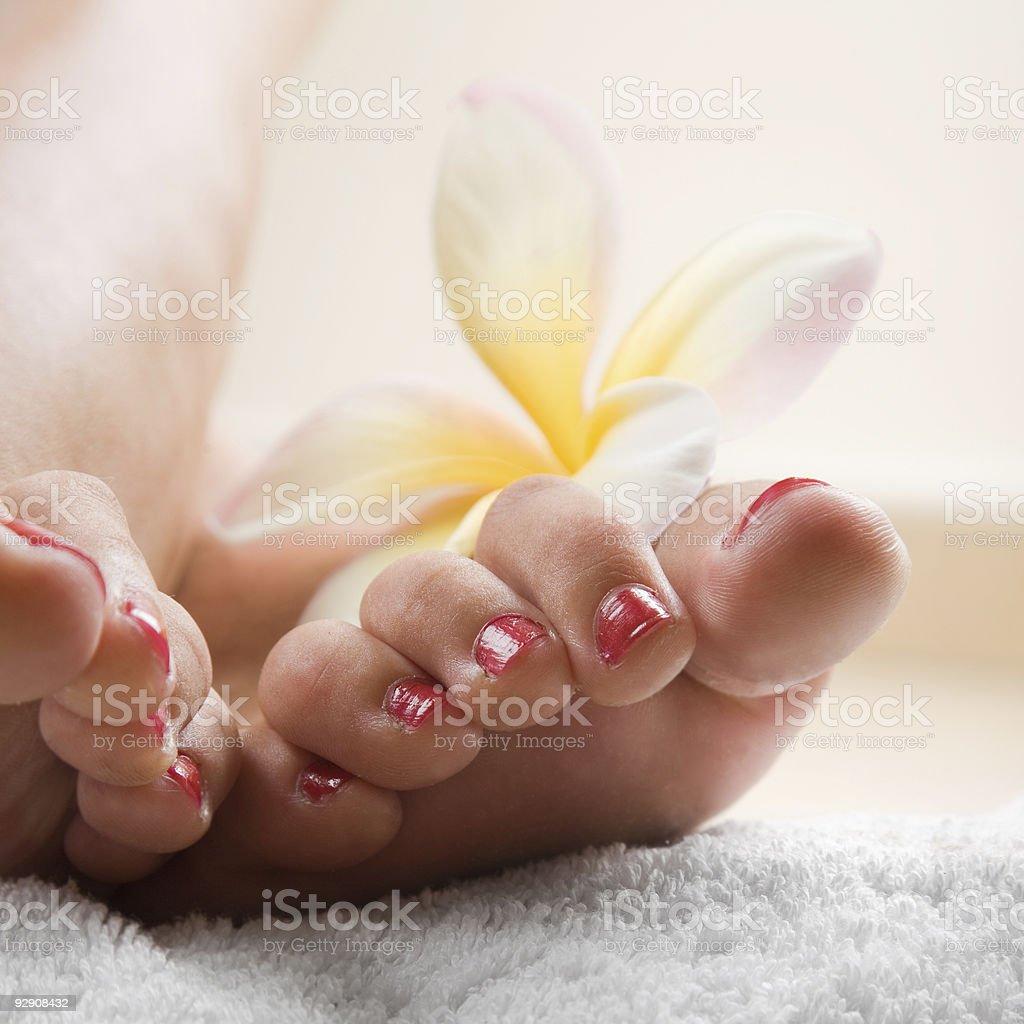Foot Spa royalty-free stock photo