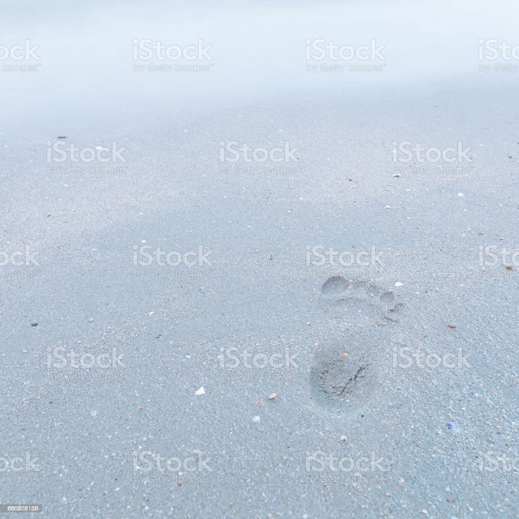Foot track on the beach stock photo