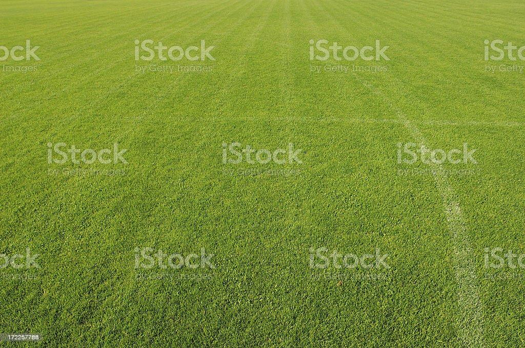 Football field grass royalty-free stock photo