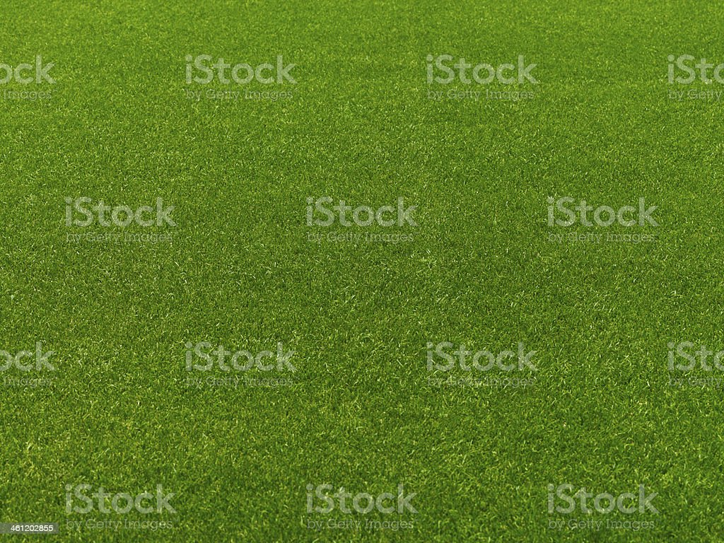 Football (soccer) field grass royalty-free stock photo