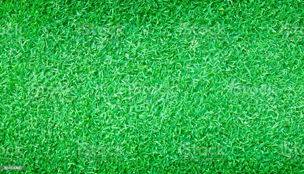 Football field green grass stock photo