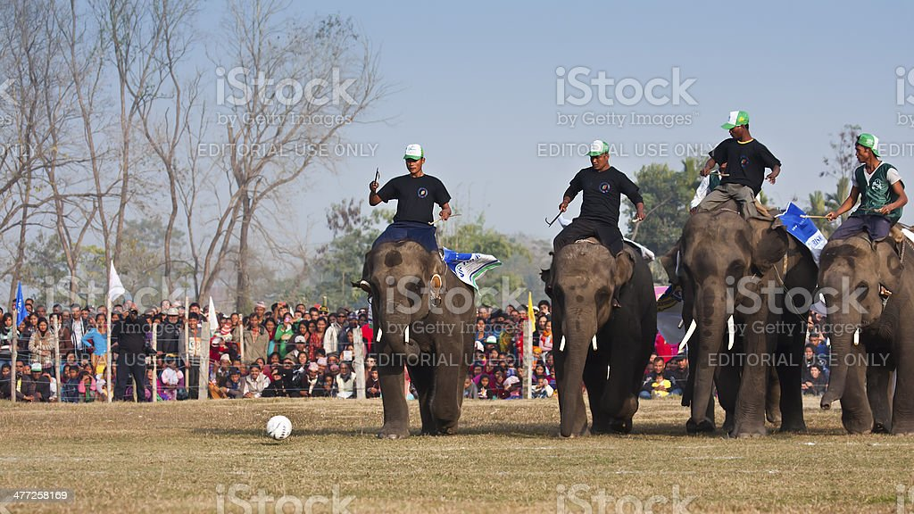 Football game - Elephant festival, Chitwan 2013, Nepal royalty-free stock photo