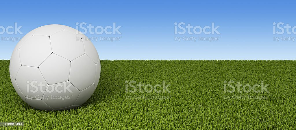 Football on a lawn royalty-free stock photo
