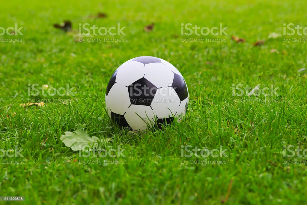 Football on grass stock photo