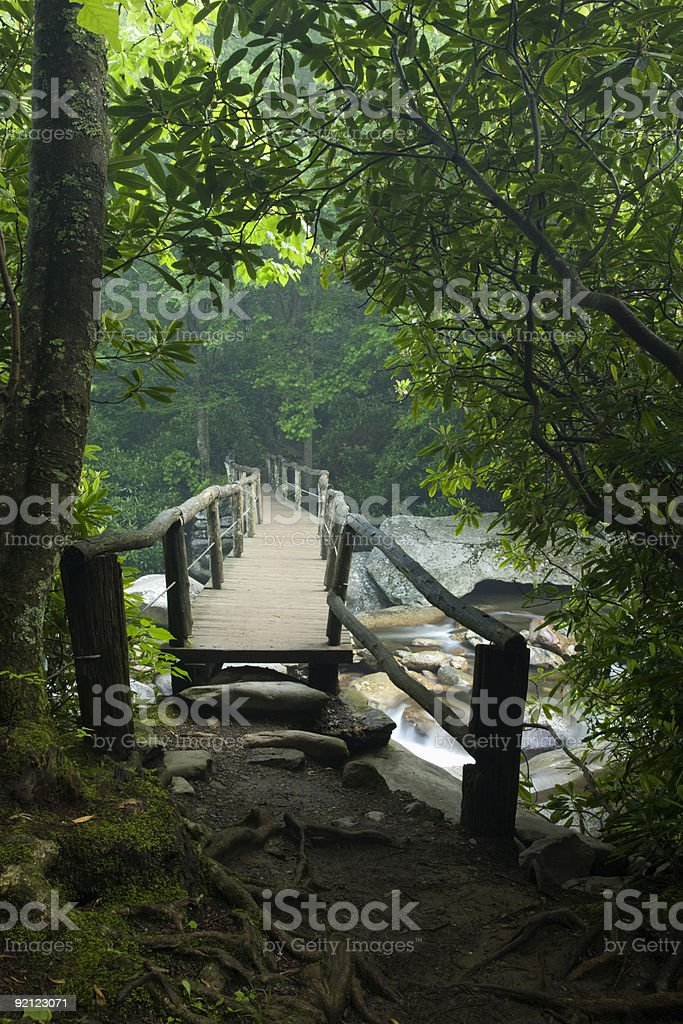 Footbridge, Chimney Tops Trail, Great Smoky Mtns Nat Park, TN stock photo