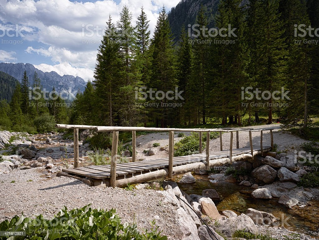 Footbridge. Color Image royalty-free stock photo