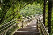 Footbridge in Iguazu national park - Argentina
