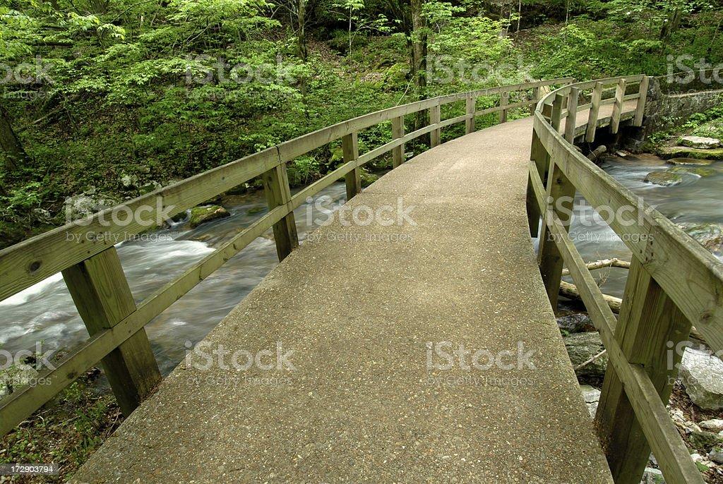 Footbridge in the Ozarks stock photo