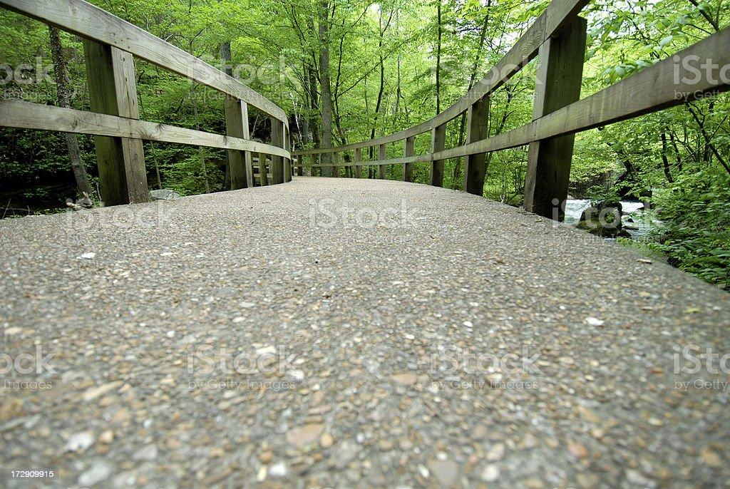 Footbridge in the Ozarks royalty-free stock photo