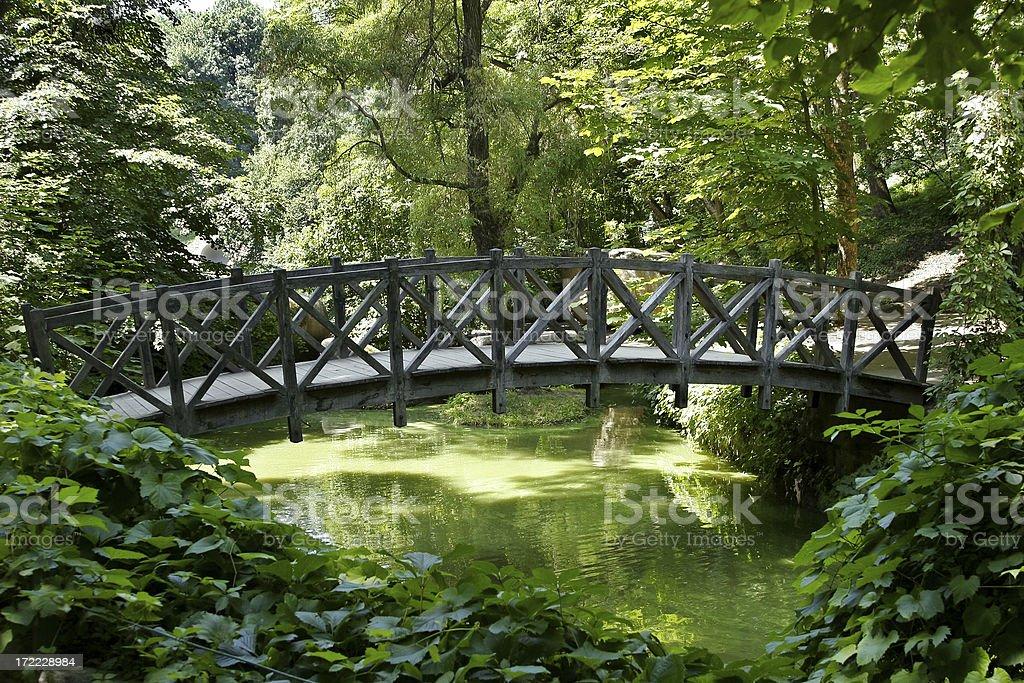 Footbridge in the Park 3 stock photo