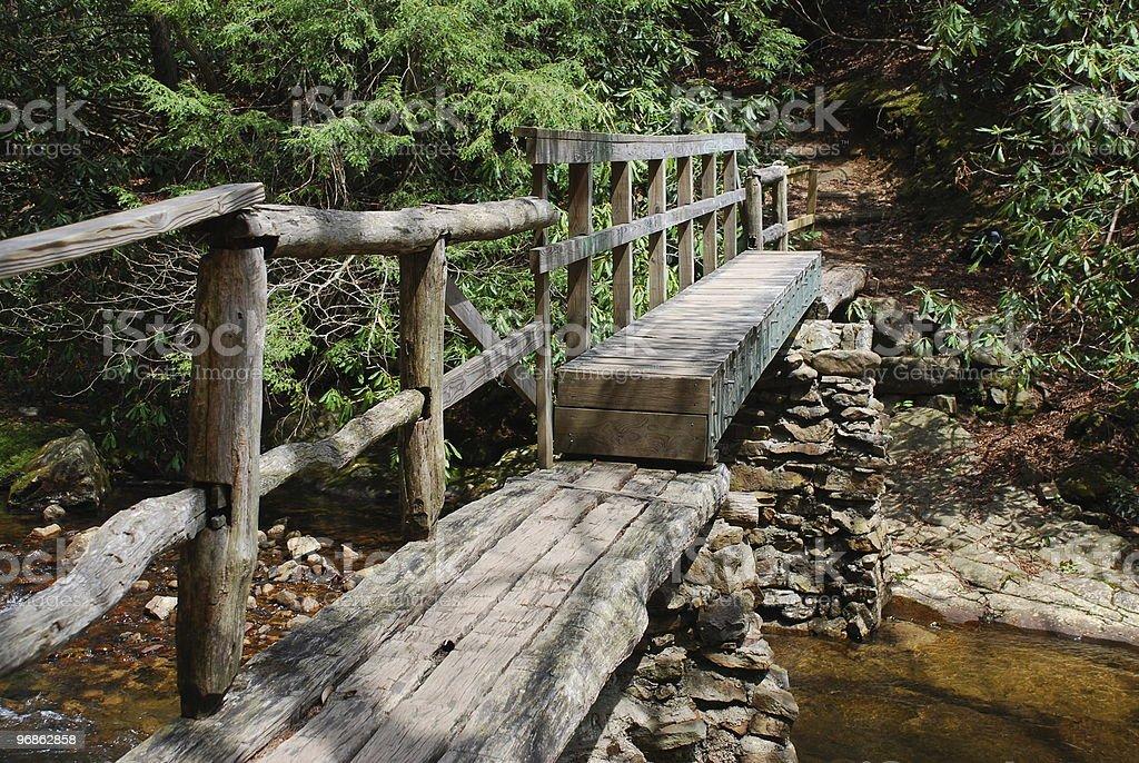 Footbridge on Appalachian Trail in Carter County, Tennessee stock photo