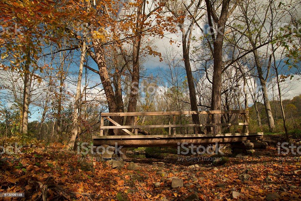 Footbridge on the autumn trail. stock photo