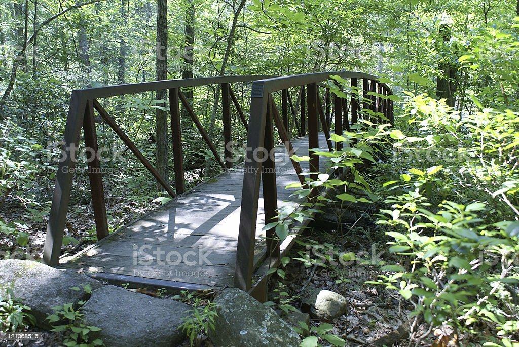 Footbridge royalty-free stock photo
