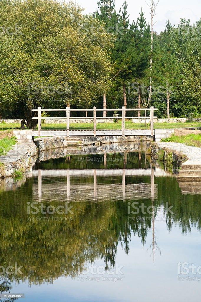 Footbridge, river ,trees , reflection in Galicia, Spain. stock photo
