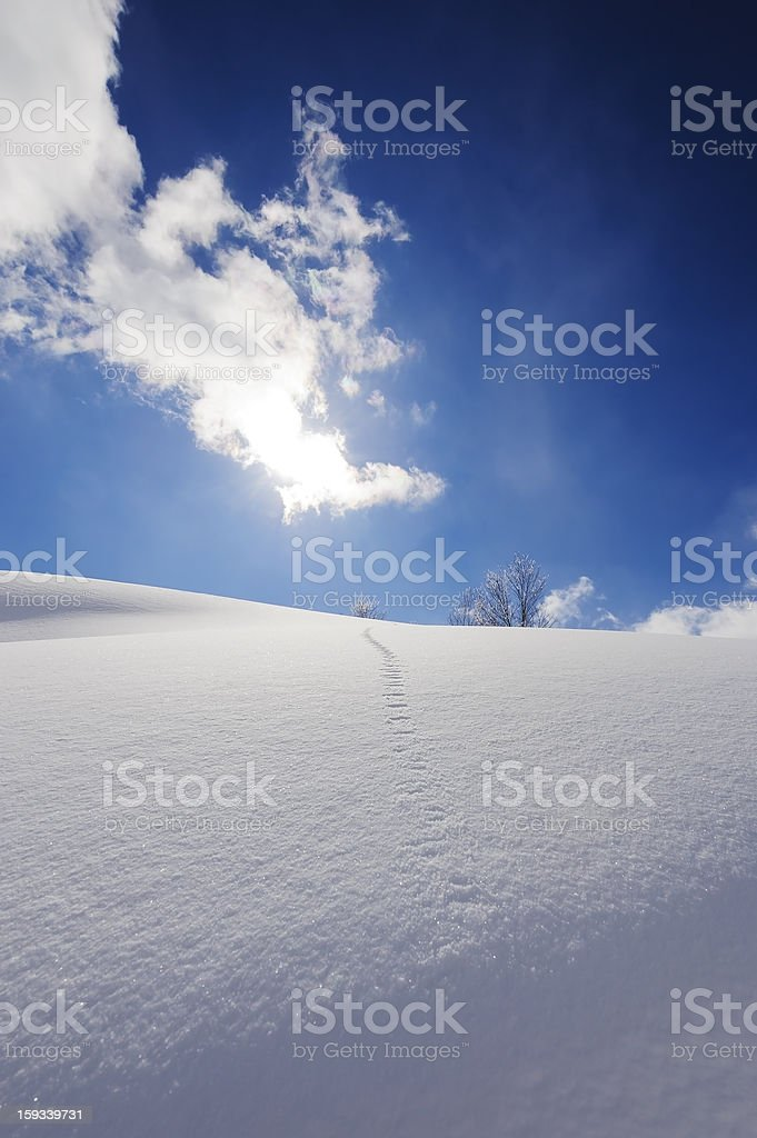 Foot-marks on the Snowy Hills royalty-free stock photo