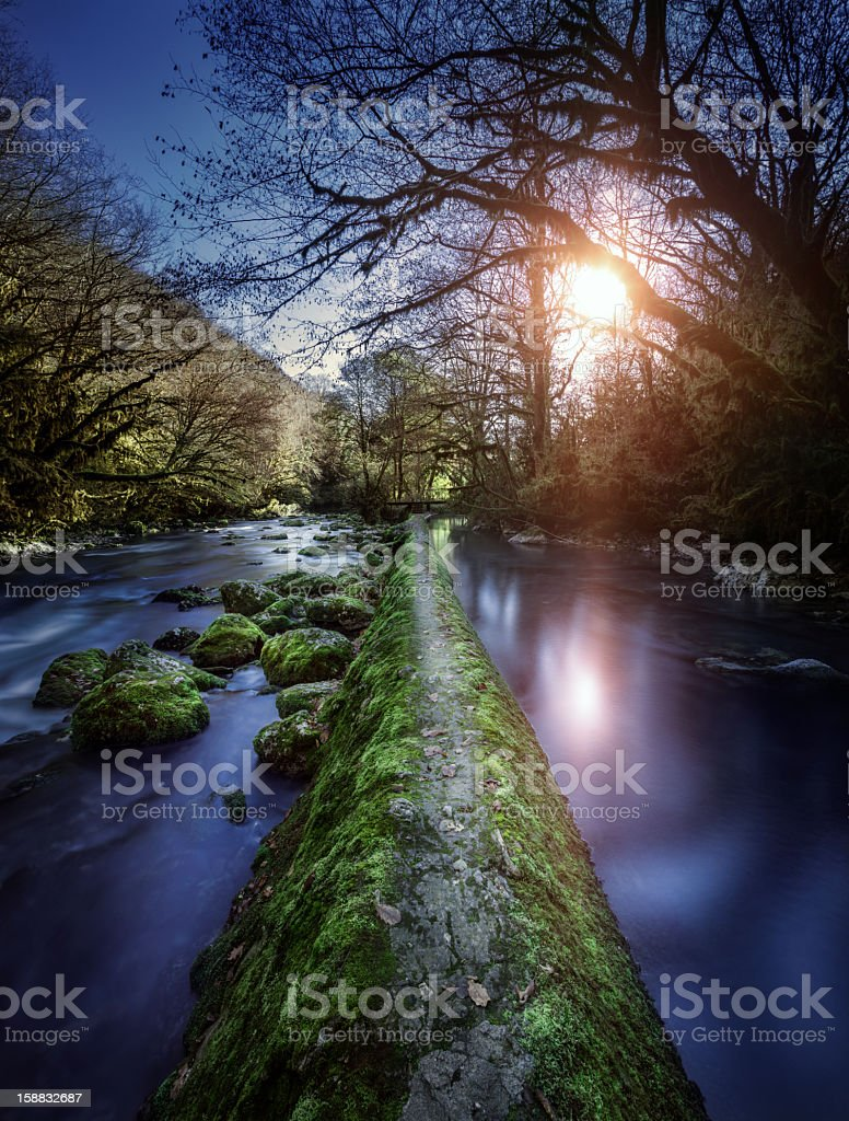 Footpath in a middle of river royalty-free stock photo