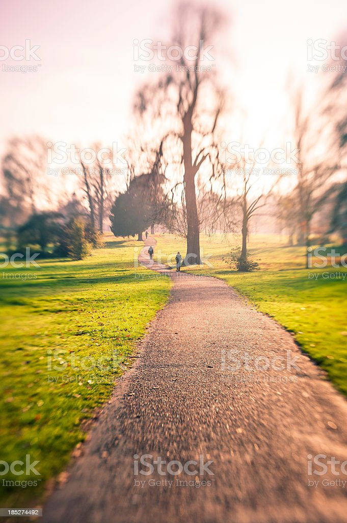 Footpath In Hyde Park During Autumn, London royalty-free stock photo