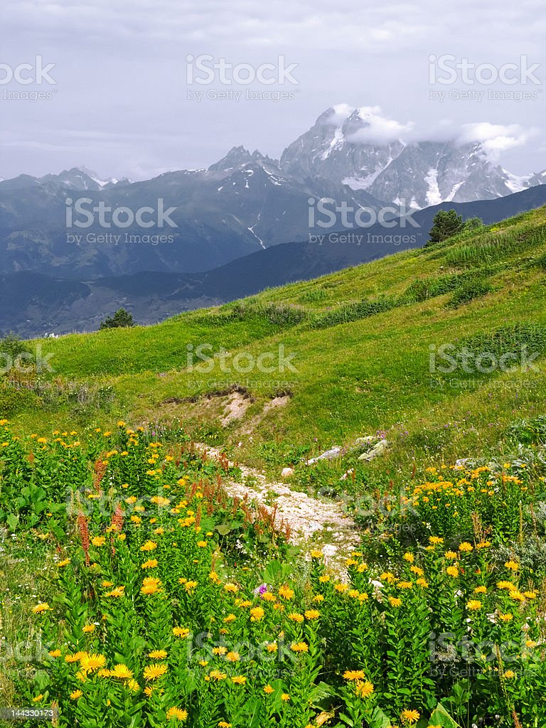 Footpath in mountains royalty-free stock photo