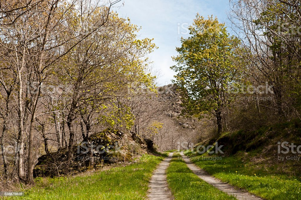 Footpath in spring stock photo