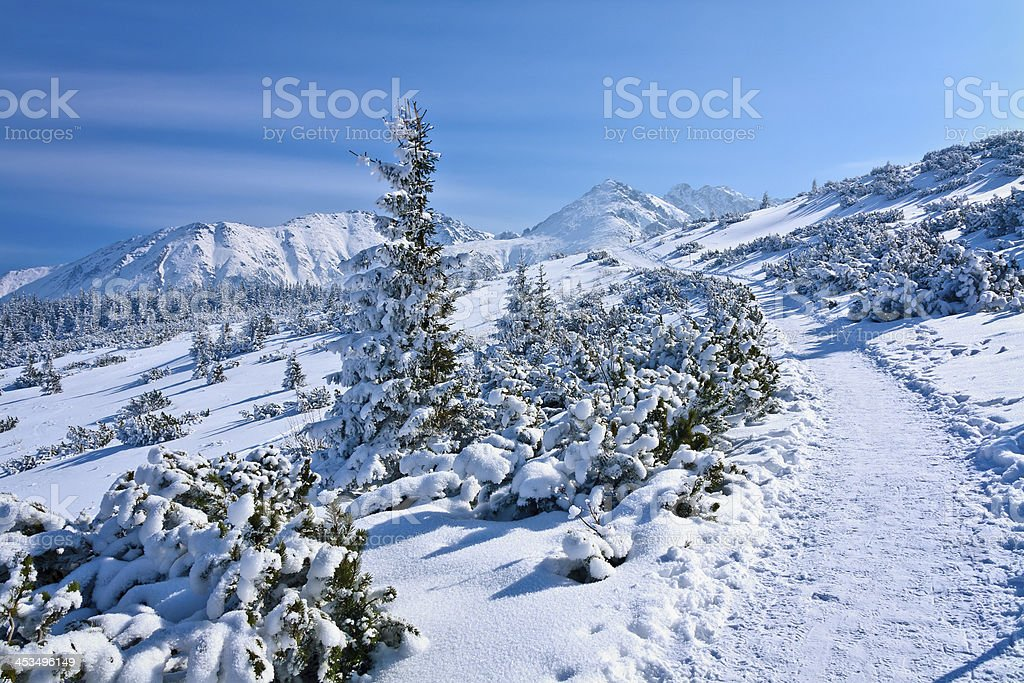 Footpath in the Mountains royalty-free stock photo