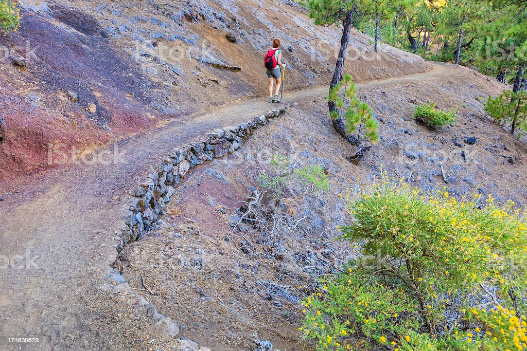 Footpath In The Park, La Palma royalty-free stock photo