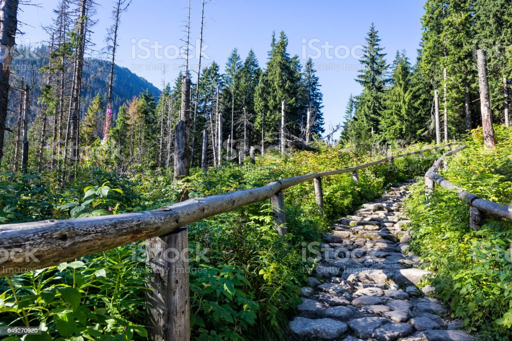 Footpath in the Tatra Mountains, Poland stock photo