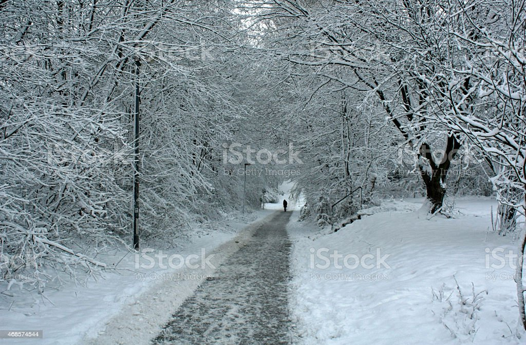 Trilho no Inverno foto de stock royalty-free