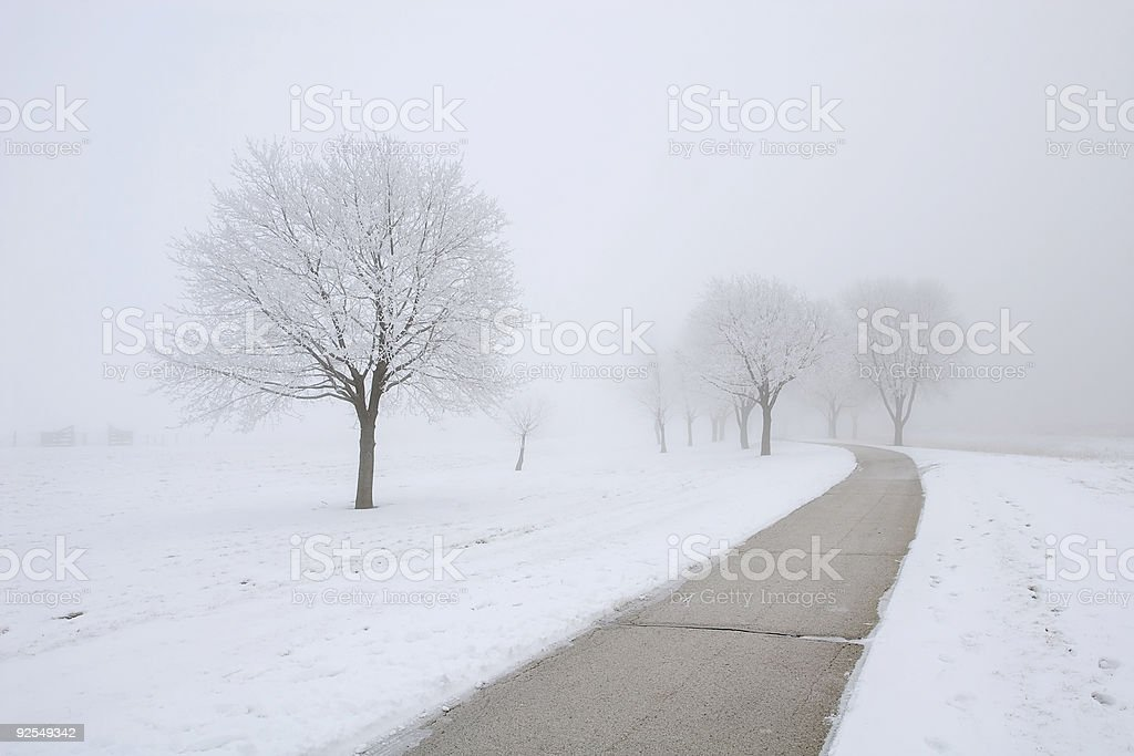 Footpath on Foggy Winter Day stock photo