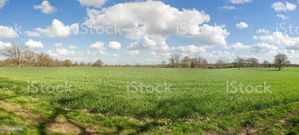 footpath stock photo
