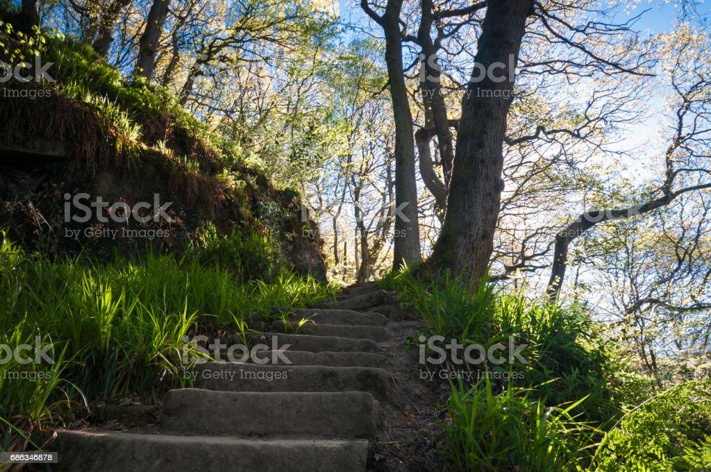 Footpath steps stock photo