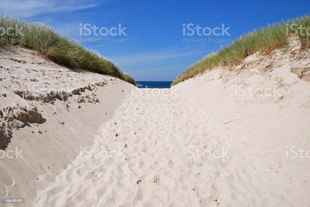 Footpath through a sand dune stock photo