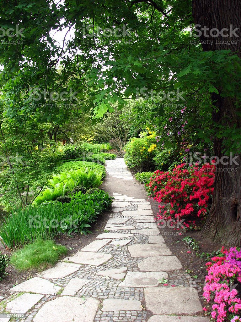 Footpath through flower beds stock photo