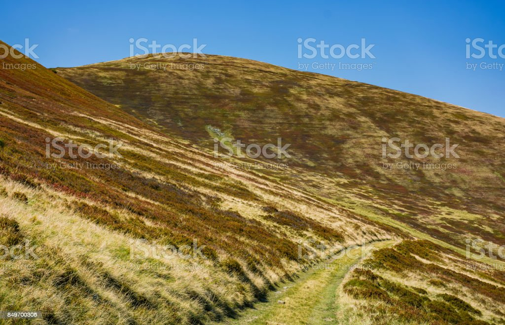 footpath through hills with forest stock photo