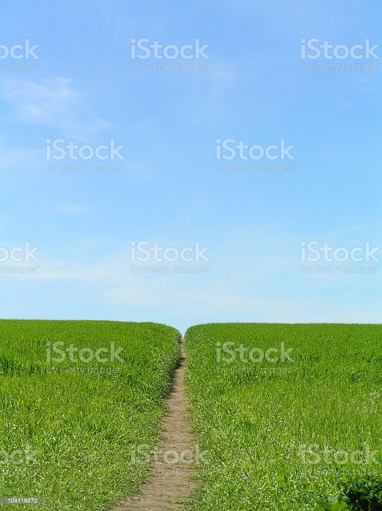 Footpath through lush countryside on a sunny day royalty-free stock photo
