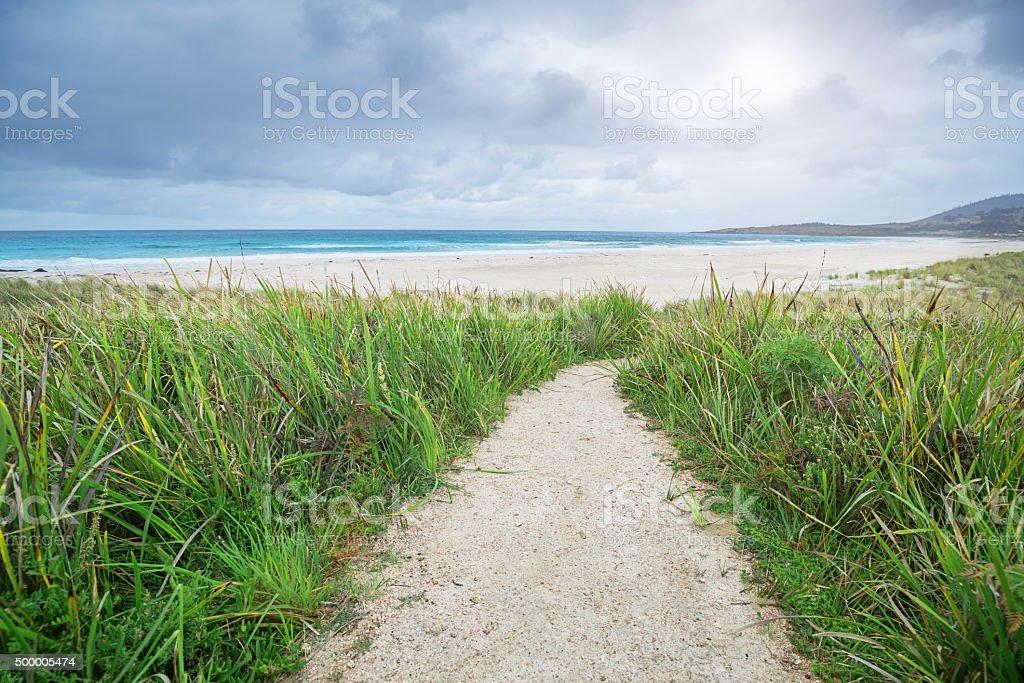 Footpath to a perfect White Sand Beach Tasmania Australia stock photo