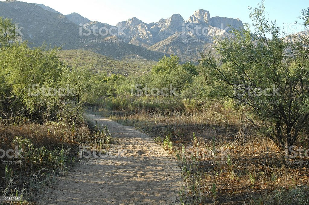 Footpath winding within a desert landscape stock photo
